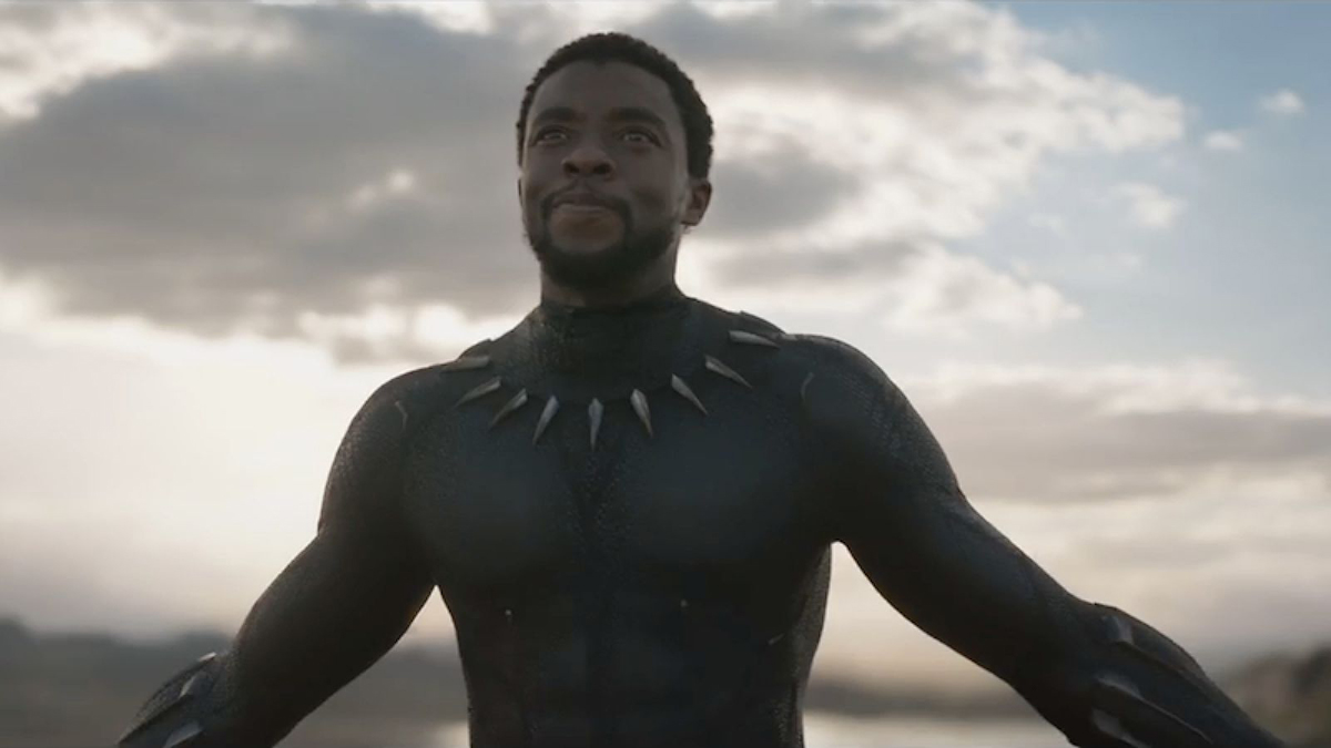 T'Challa in the Black Panther suit without his mask